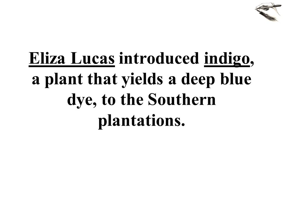 Eliza Lucas introduced indigo, a plant that yields a deep blue dye, to the Southern plantations.