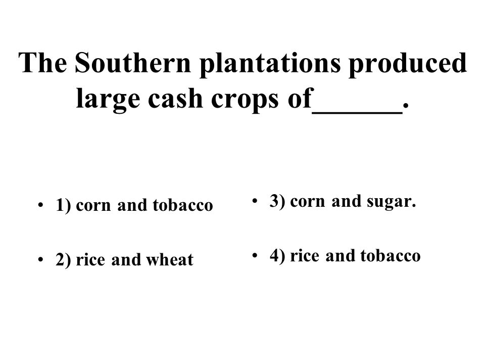 The Southern plantations produced large cash crops of______. 1) corn and tobacco 2) rice and wheat 3) corn and sugar. 4) rice and tobacco