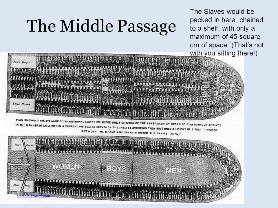 The Middle Passage WOMEN MEN BOYS The Slaves would be packed in here, chained to a shelf, with only a maximum of 45 square cm of space.