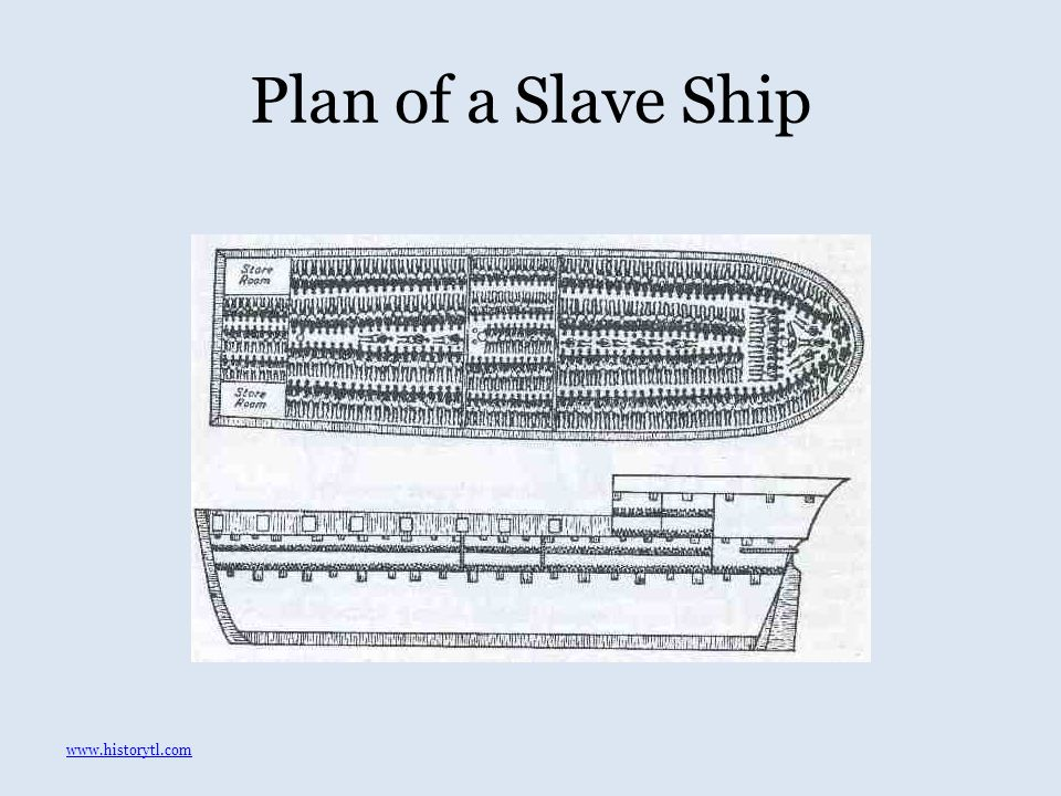 Plan of a Slave Ship www.historytl.com