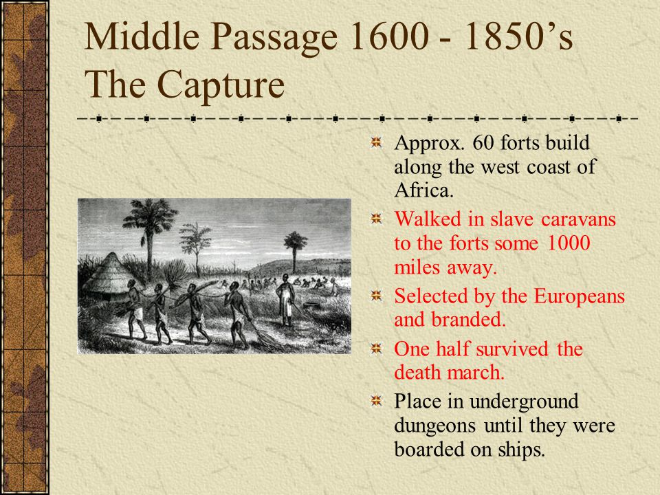 Middle Passage 1600 - 1850's The Capture Approx. 60 forts build along the west coast of Africa.