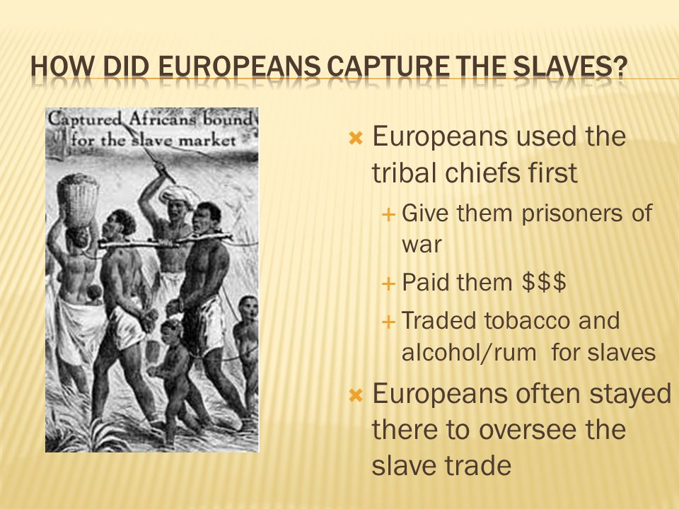  Europeans used the tribal chiefs first  Give them prisoners of war  Paid them $$$  Traded tobacco and alcohol/rum for slaves  Europeans often stayed there to oversee the slave trade