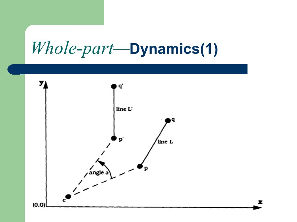 Whole-part— Dynamics(1)
