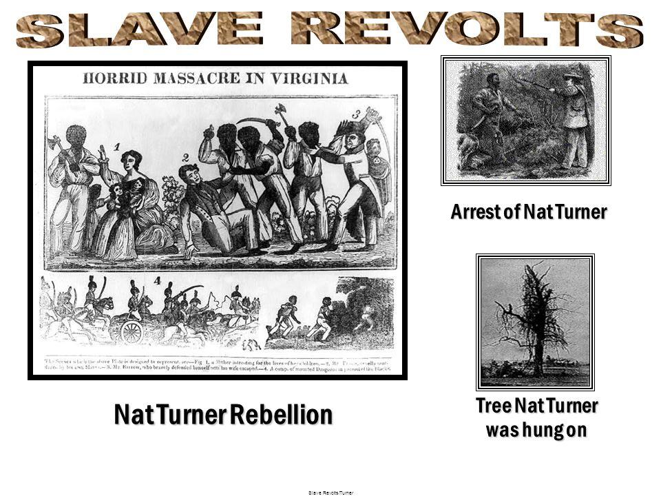 Nat Turner Rebellion Nat Turner, 21st August, 1831, Nat Turner was executed on 11th November, 1831. Nat Turner, a slave owned by Joseph Travis of Sout