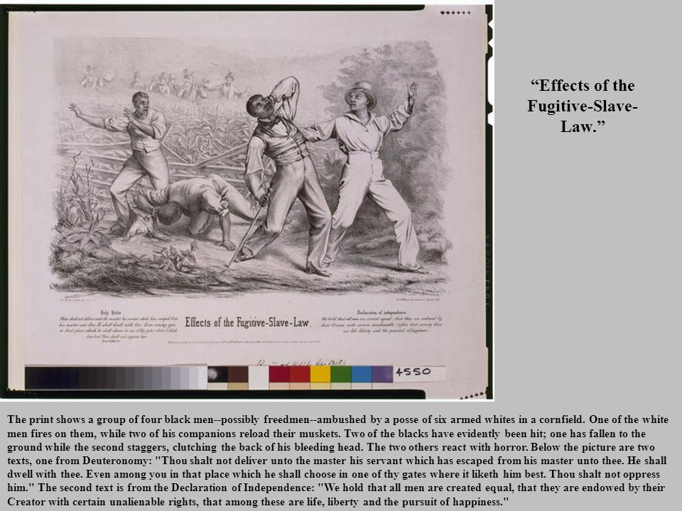 Effects of the Fugitive-Slave- Law. The print shows a group of four black men--possibly freedmen--ambushed by a posse of six armed whites in a cornfield.