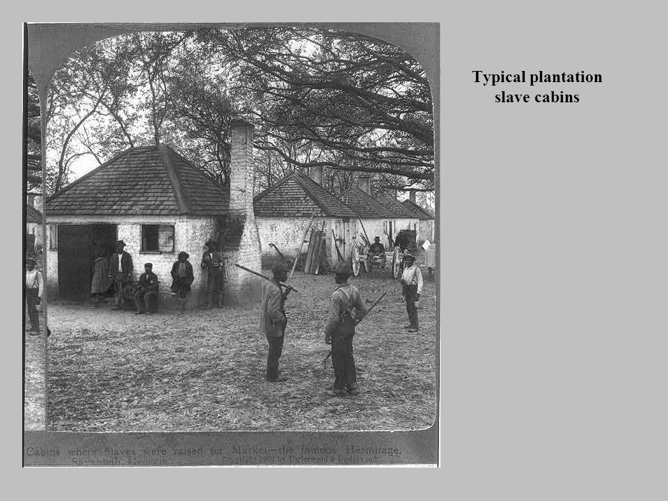 Typical plantation slave cabins
