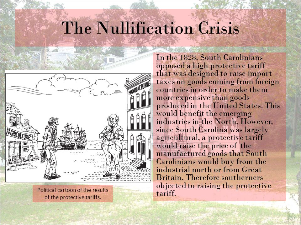 The Nullification Crisis In the 1828, South Carolinians opposed a high protective tariff that was designed to raise import taxes on goods coming from