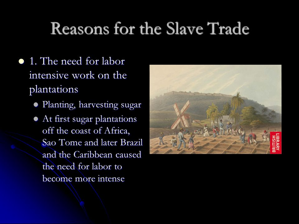 Reasons for the Slave Trade 1. The need for labor intensive work on the plantations 1. The need for labor intensive work on the plantations Planting,