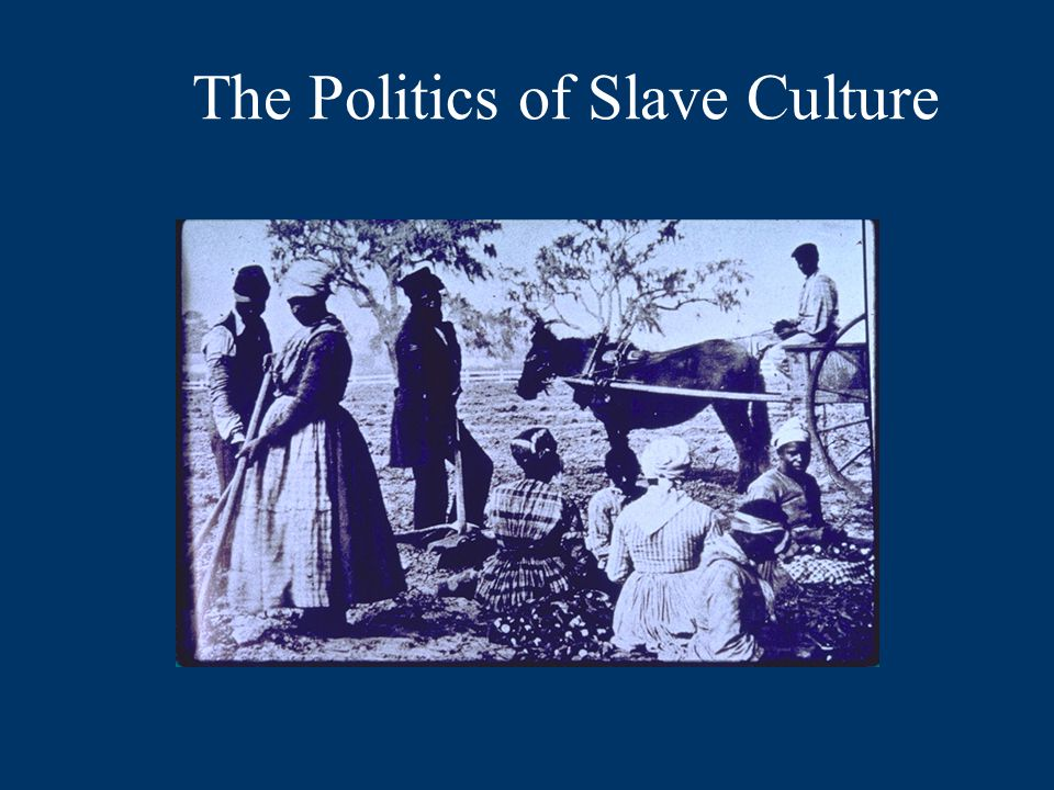 The Politics of Slave Culture