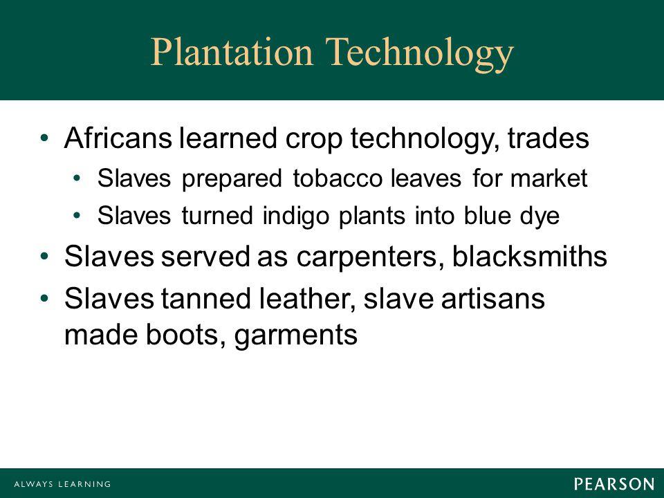 Plantation Technology Africans learned crop technology, trades Slaves prepared tobacco leaves for market Slaves turned indigo plants into blue dye Slaves served as carpenters, blacksmiths Slaves tanned leather, slave artisans made boots, garments