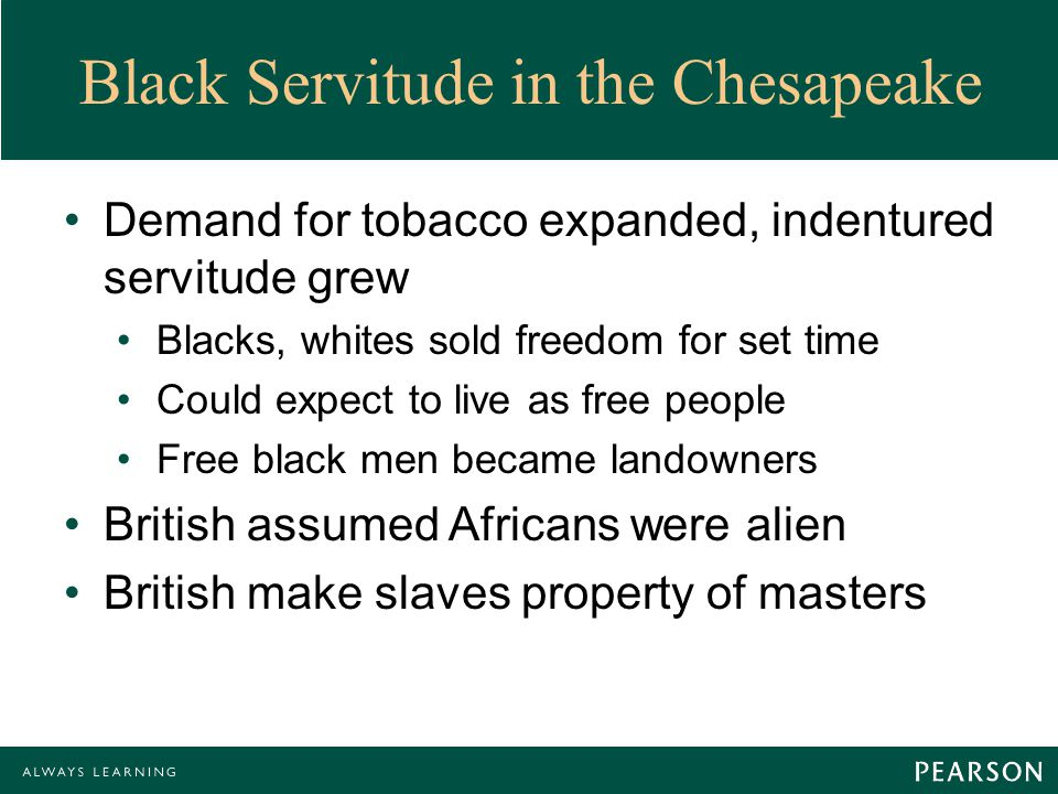 Black Servitude in the Chesapeake Demand for tobacco expanded, indentured servitude grew Blacks, whites sold freedom for set time Could expect to live as free people Free black men became landowners British assumed Africans were alien British make slaves property of masters