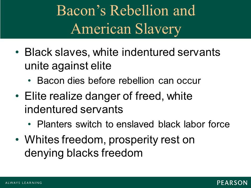 Bacon's Rebellion and American Slavery Black slaves, white indentured servants unite against elite Bacon dies before rebellion can occur Elite realize danger of freed, white indentured servants Planters switch to enslaved black labor force Whites freedom, prosperity rest on denying blacks freedom