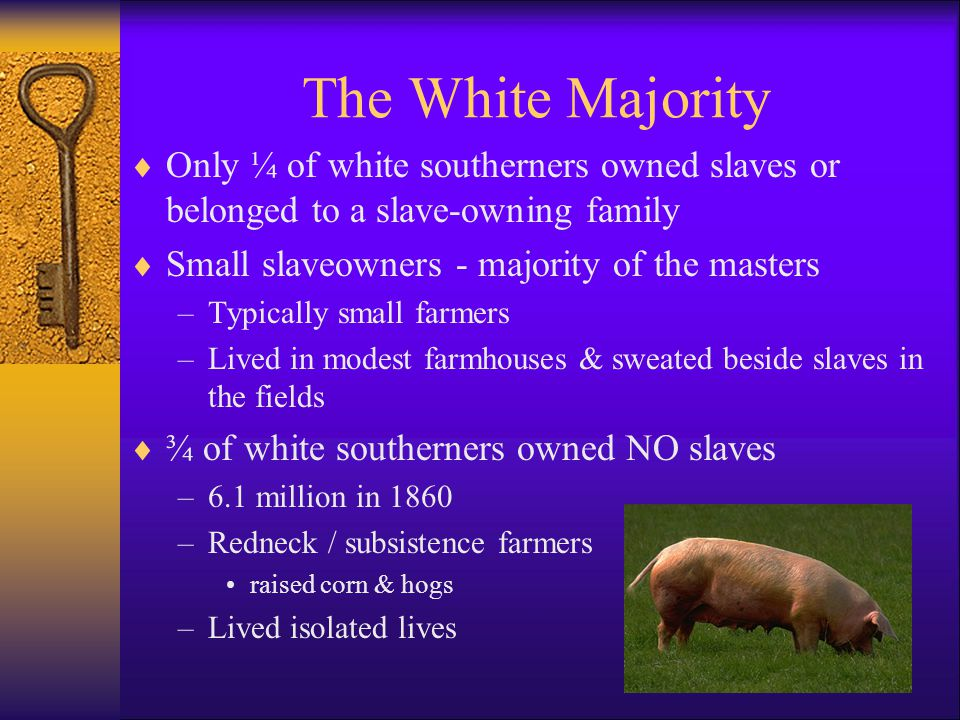 The White Majority  Only ¼ of white southerners owned slaves or belonged to a slave-owning family  Small slaveowners - majority of the masters –Typically small farmers –Lived in modest farmhouses & sweated beside slaves in the fields  ¾ of white southerners owned NO slaves –6.1 million in 1860 –Redneck / subsistence farmers raised corn & hogs –Lived isolated lives