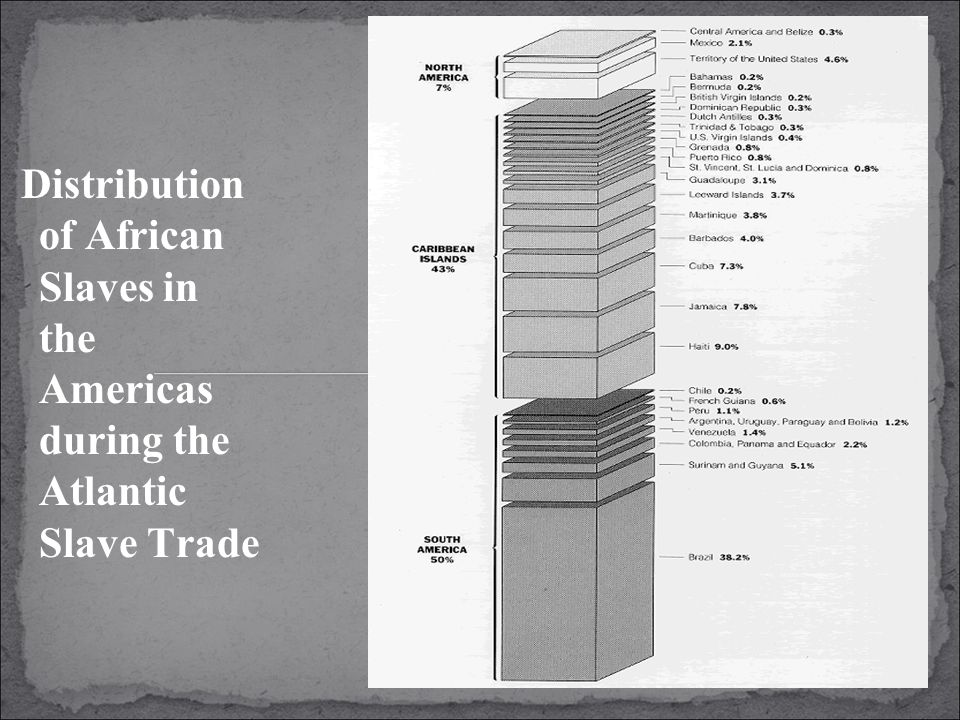 Distribution of African Slaves in the Americas during the Atlantic Slave Trade