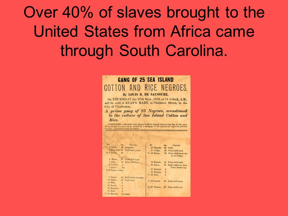 Many of the slaves ended up on plantations in South Carolina.
