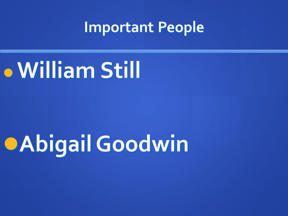 Important People William Still William Still Abigail Goodwin Abigail Goodwin