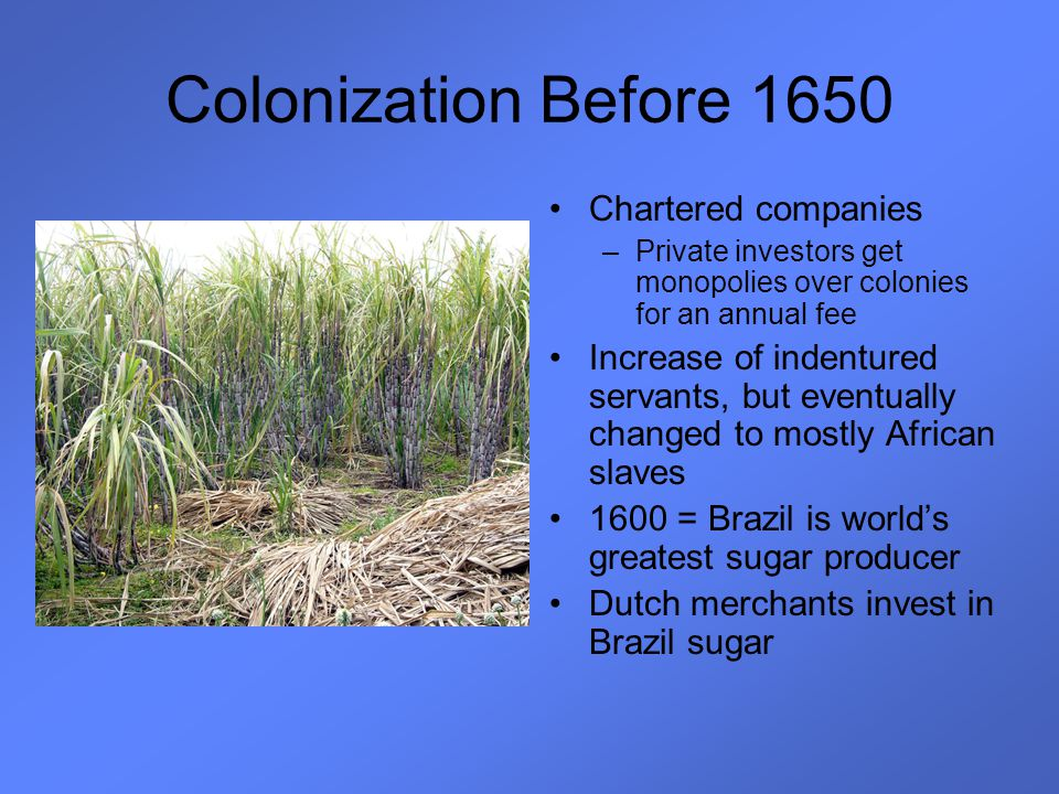 Colonization Before 1650 Chartered companies –Private investors get monopolies over colonies for an annual fee Increase of indentured servants, but ev