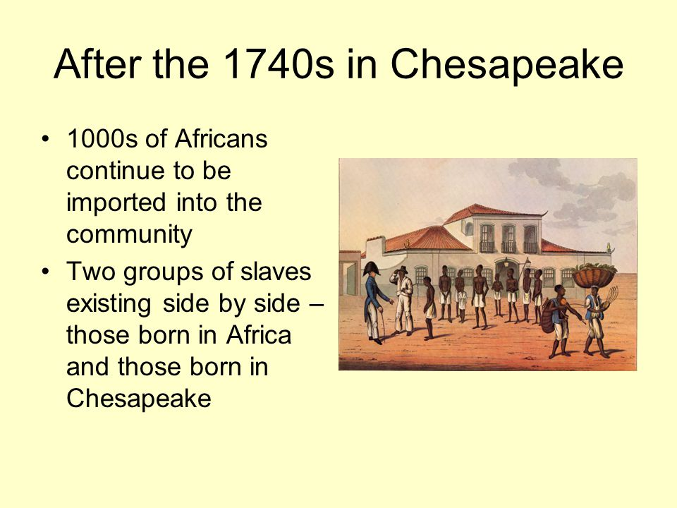 After the 1740s in Chesapeake 1000s of Africans continue to be imported into the community Two groups of slaves existing side by side – those born in Africa and those born in Chesapeake