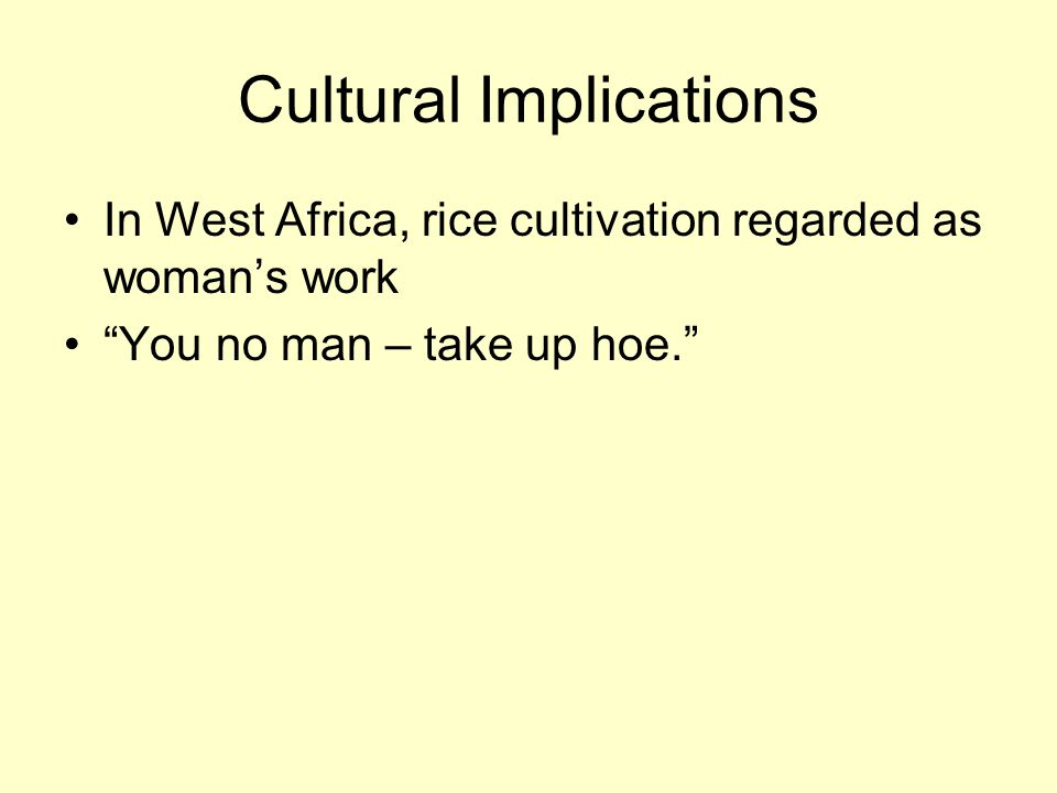 Cultural Implications In West Africa, rice cultivation regarded as woman's work You no man – take up hoe.