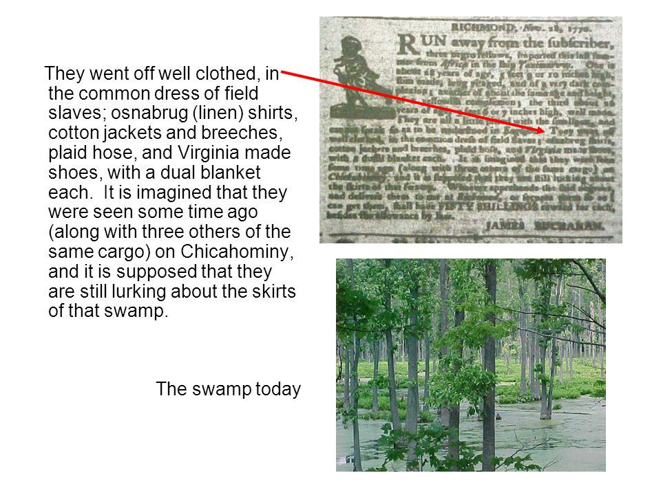 Background According to the ad, Buchanan has based his guess as to where they had gone on the testimony of an eyewitness who saw the runaways near the swamp, although we do not know how reliable the evidence was.