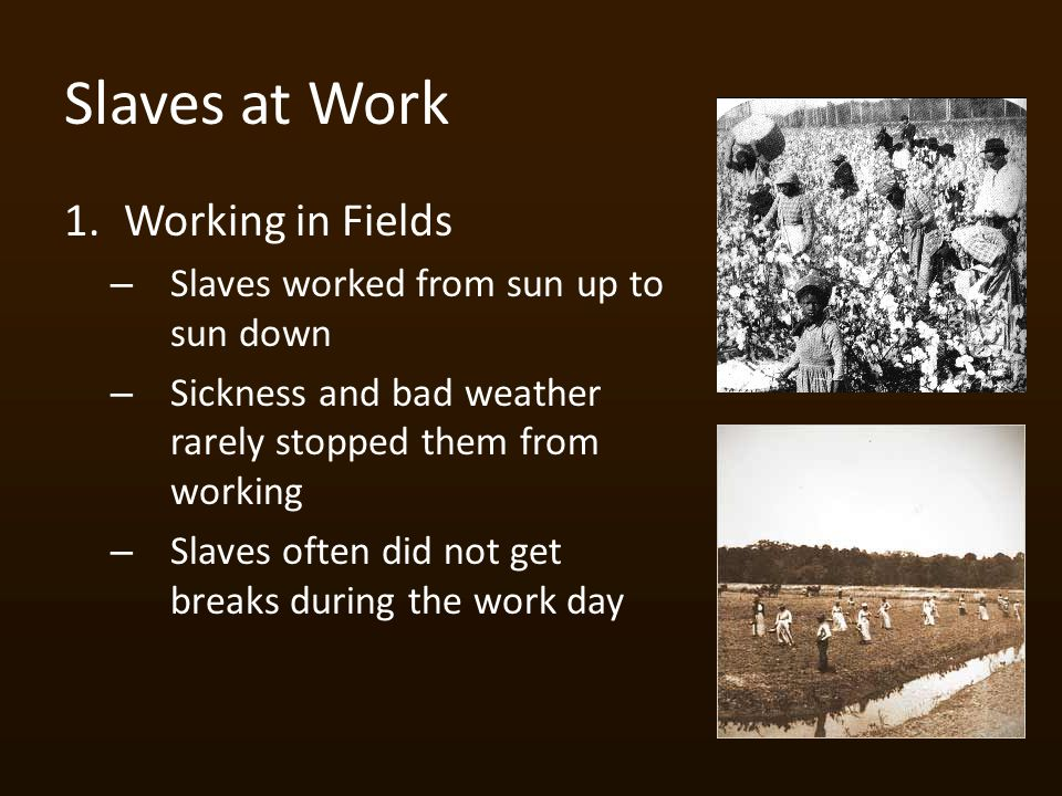 Slaves at Work 1.Working in Fields – Slaves worked from sun up to sun down – Sickness and bad weather rarely stopped them from working – Slaves often did not get breaks during the work day