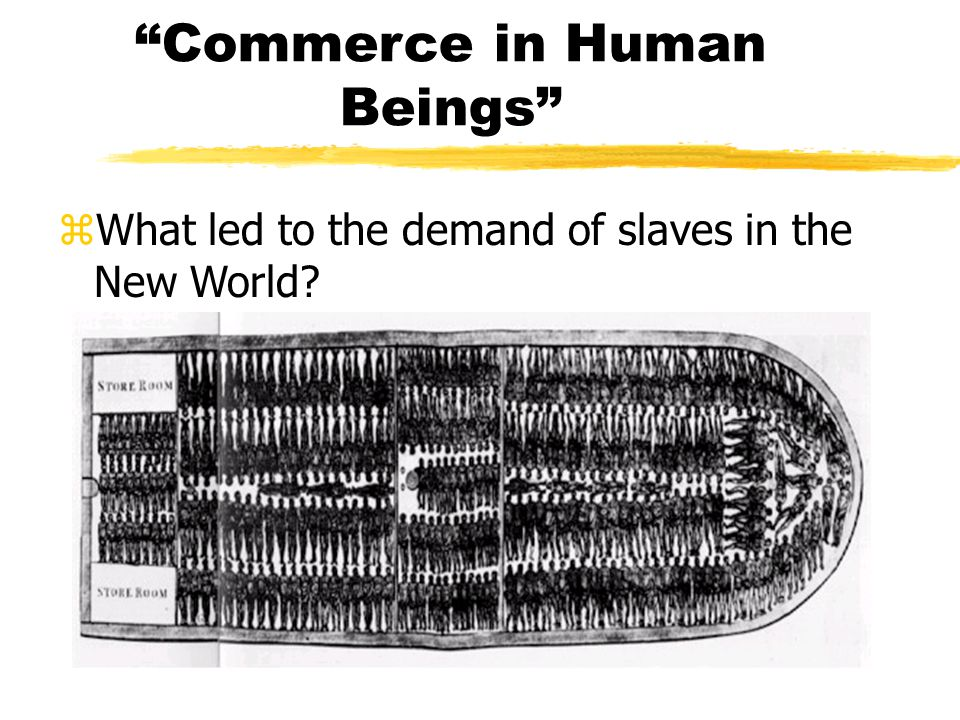 The HEIGHT of the Slave Trade z 1700s: @60,000 Africans were enslaved a year z huge PROFITS $$$$ z RACISM took root z slaves traded for guns z Slave Castles Slave Castles z the Middle Passage