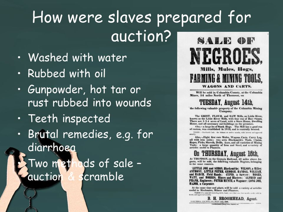 How were slaves prepared for auction.