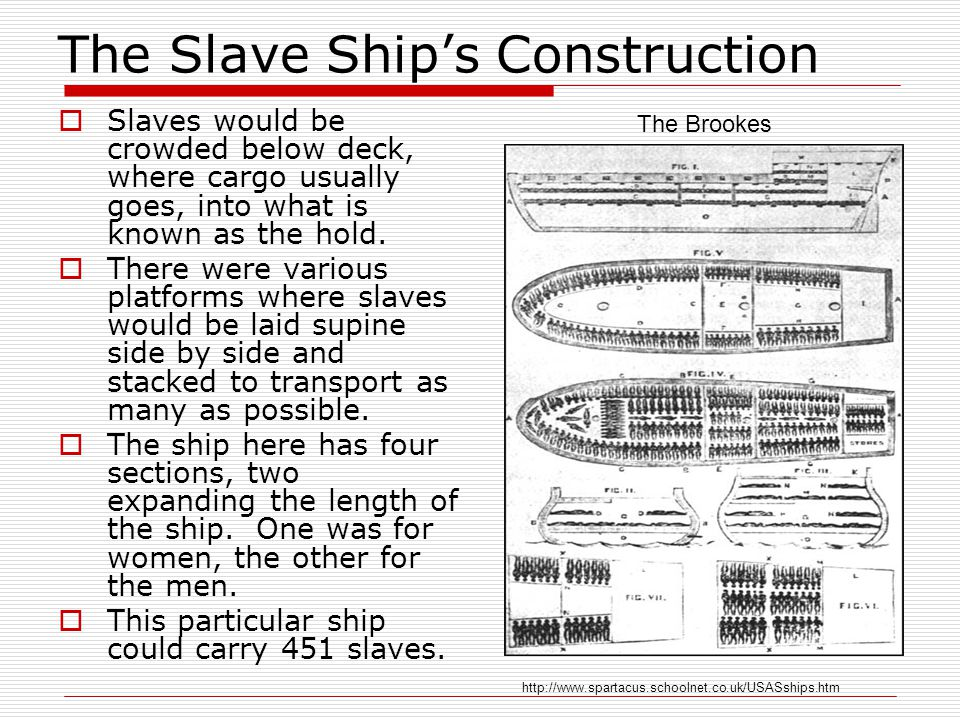 The Slave Ship's Construction  Slaves would be crowded below deck, where cargo usually goes, into what is known as the hold.