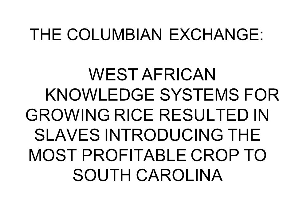 THE COLUMBIAN EXCHANGE: WEST AFRICAN KNOWLEDGE SYSTEMS FOR GROWING RICE RESULTED IN SLAVES INTRODUCING THE MOST PROFITABLE CROP TO SOUTH CAROLINA