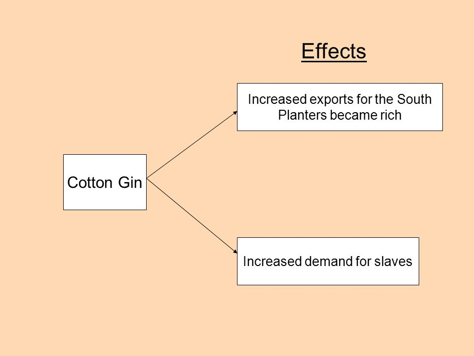 Whitney Ends the Fiber Famine Cotton gin invented in 1793 –50 times more effective than hand picking Raising cotton more profitable –South needs slavery more than ever for King Cotton HNew England factories flourish with Southern cotton