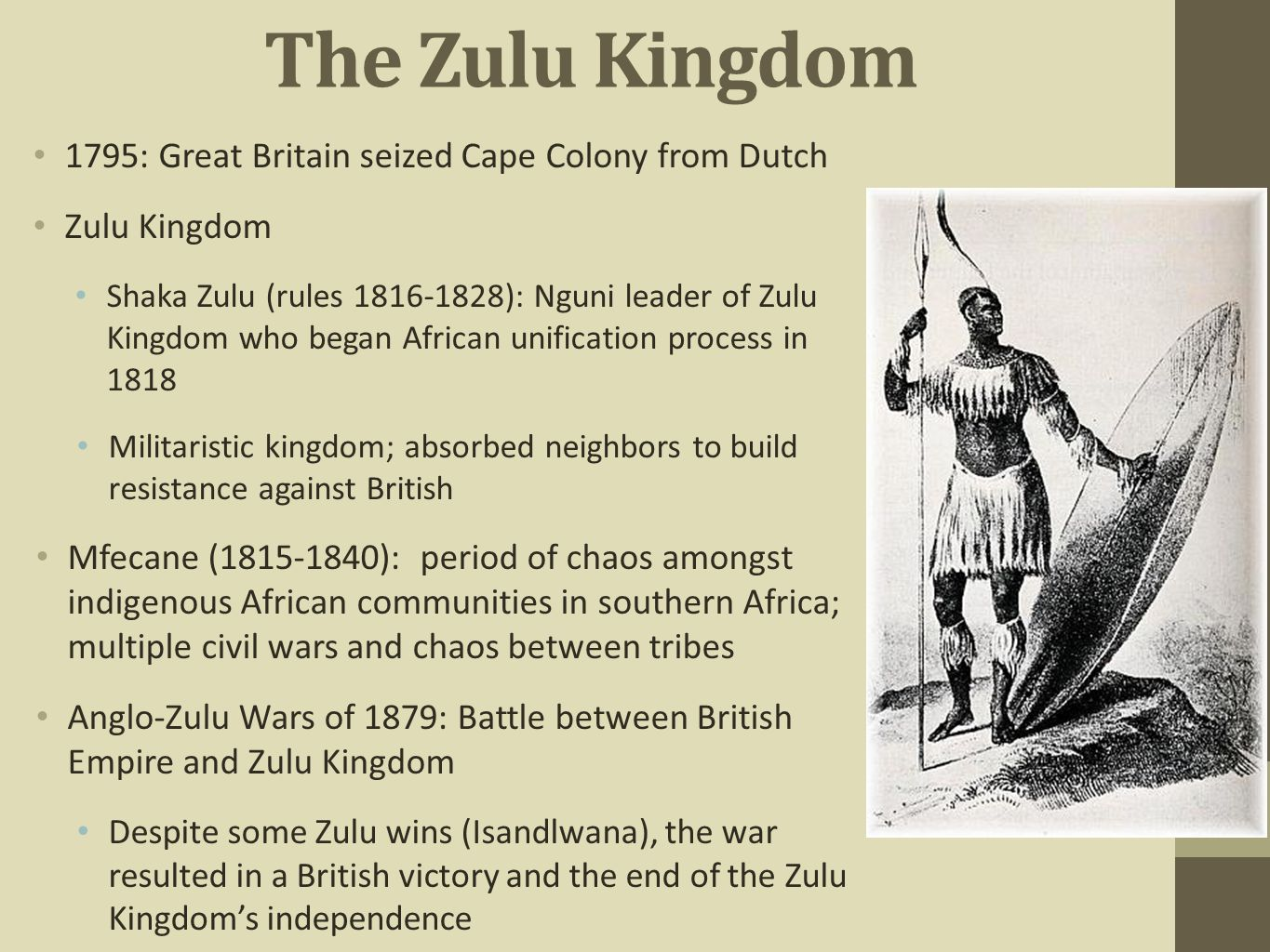 The Zulu Kingdom 1795: Great Britain seized Cape Colony from Dutch Zulu Kingdom Shaka Zulu (rules 1816-1828): Nguni leader of Zulu Kingdom who began A
