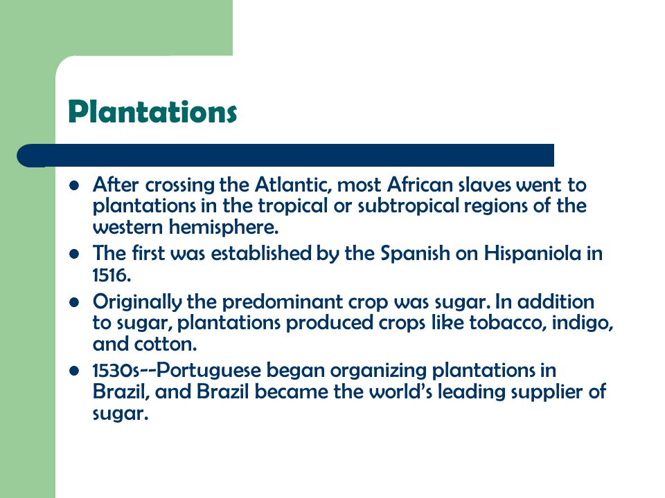Plantations After crossing the Atlantic, most African slaves went to plantations in the tropical or subtropical regions of the western hemisphere. The