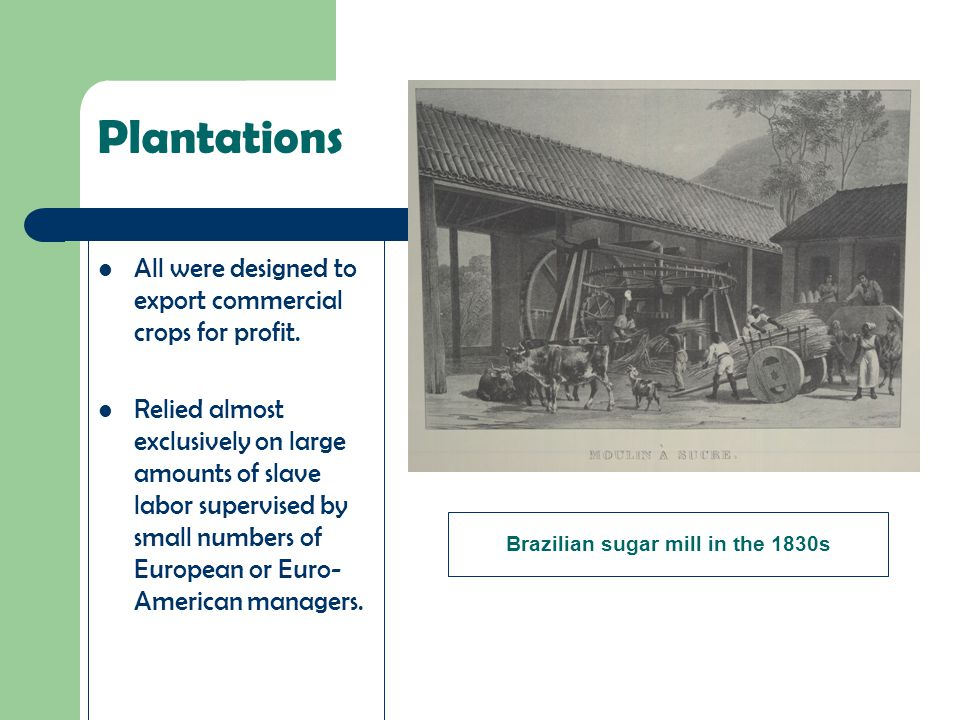 Plantations All were designed to export commercial crops for profit. Relied almost exclusively on large amounts of slave labor supervised by small num