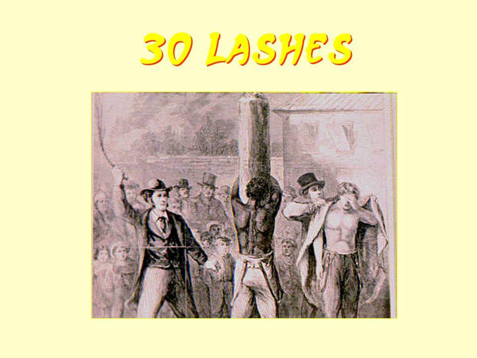 30 Lashes