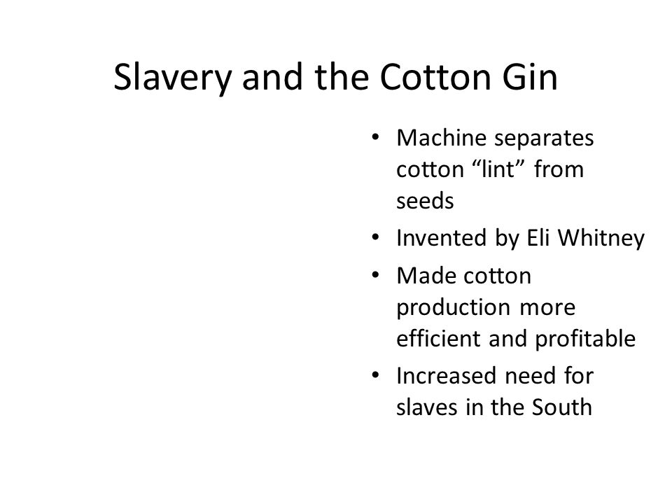 """Slavery and the Cotton Gin Machine separates cotton """"lint"""" from seeds Invented by Eli Whitney Made cotton production more efficient and profitable Inc"""