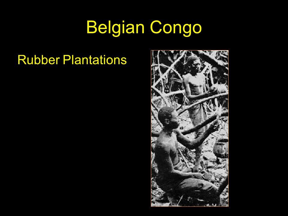 Belgian Congo Rubber Plantations