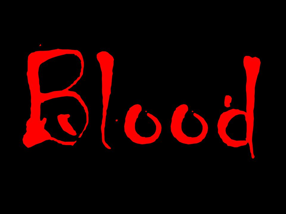 What does it mean to spill blood ?