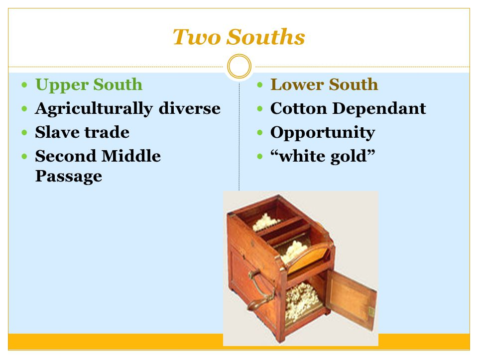 Two Souths Upper South Agriculturally diverse Slave trade Second Middle Passage Lower South Cotton Dependant Opportunity white gold