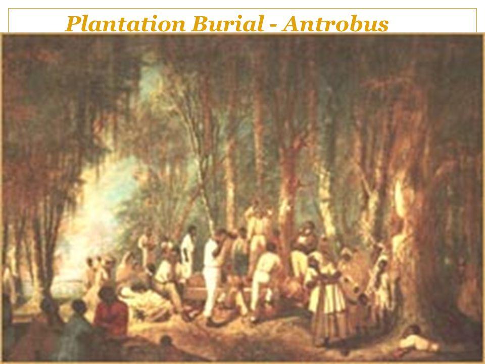 Plantation Burial - Antrobus
