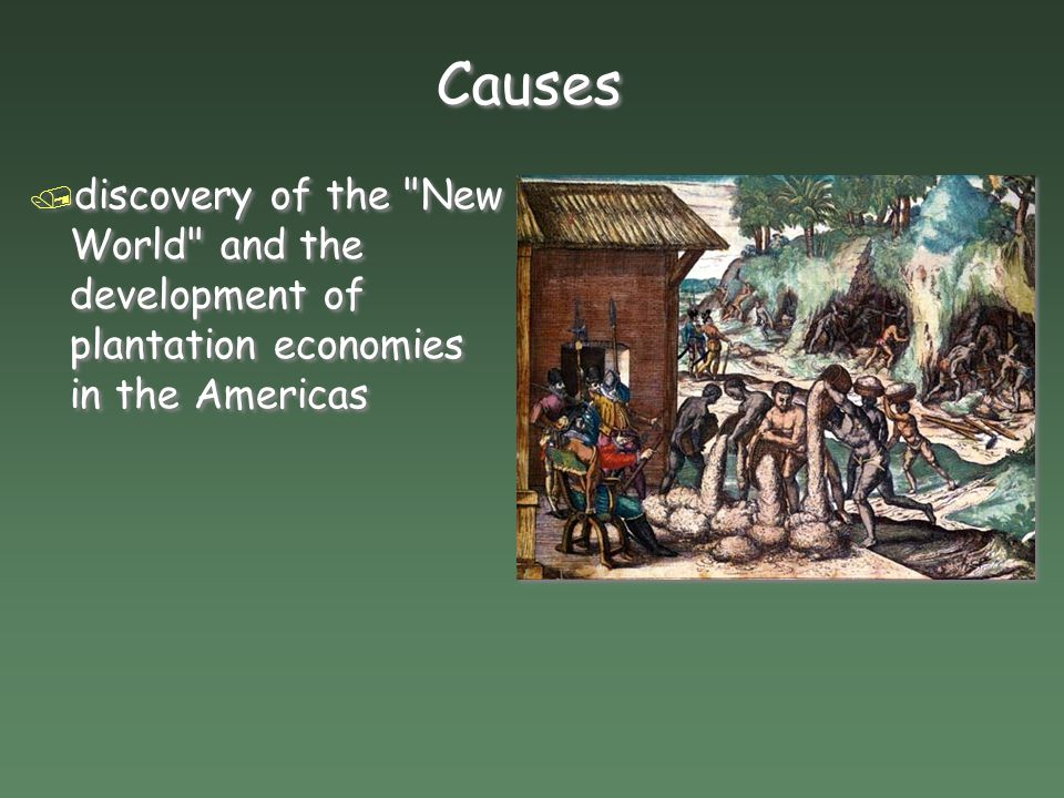 Causes / discovery of the New World and the development of plantation economies in the Americas