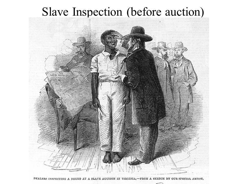Slave Inspection (before auction)