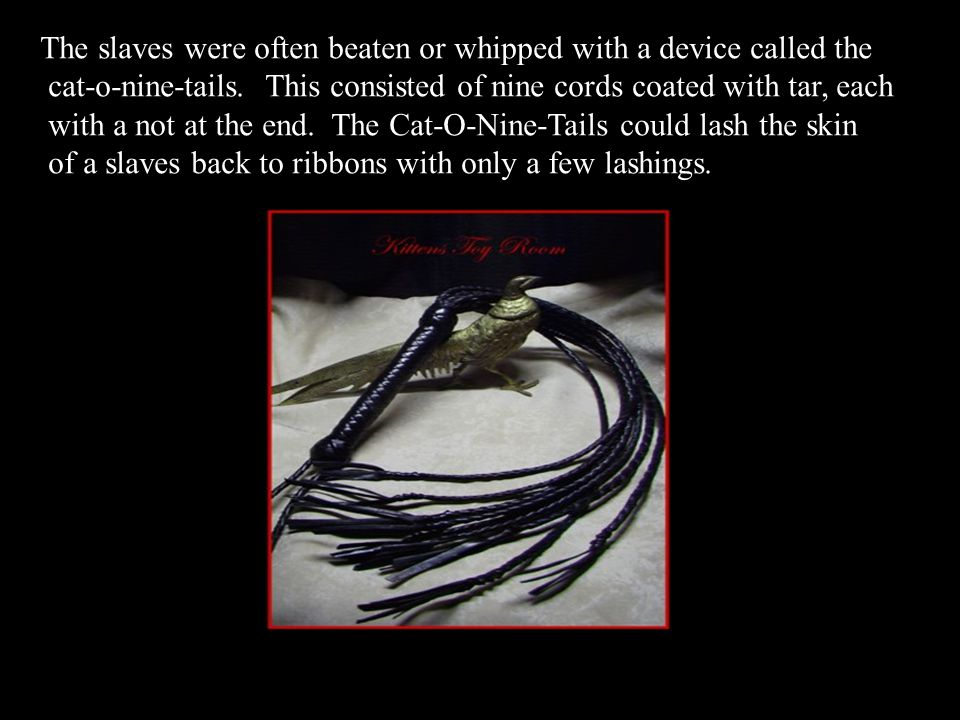 The slaves were often beaten or whipped with a device called the cat-o-nine-tails.