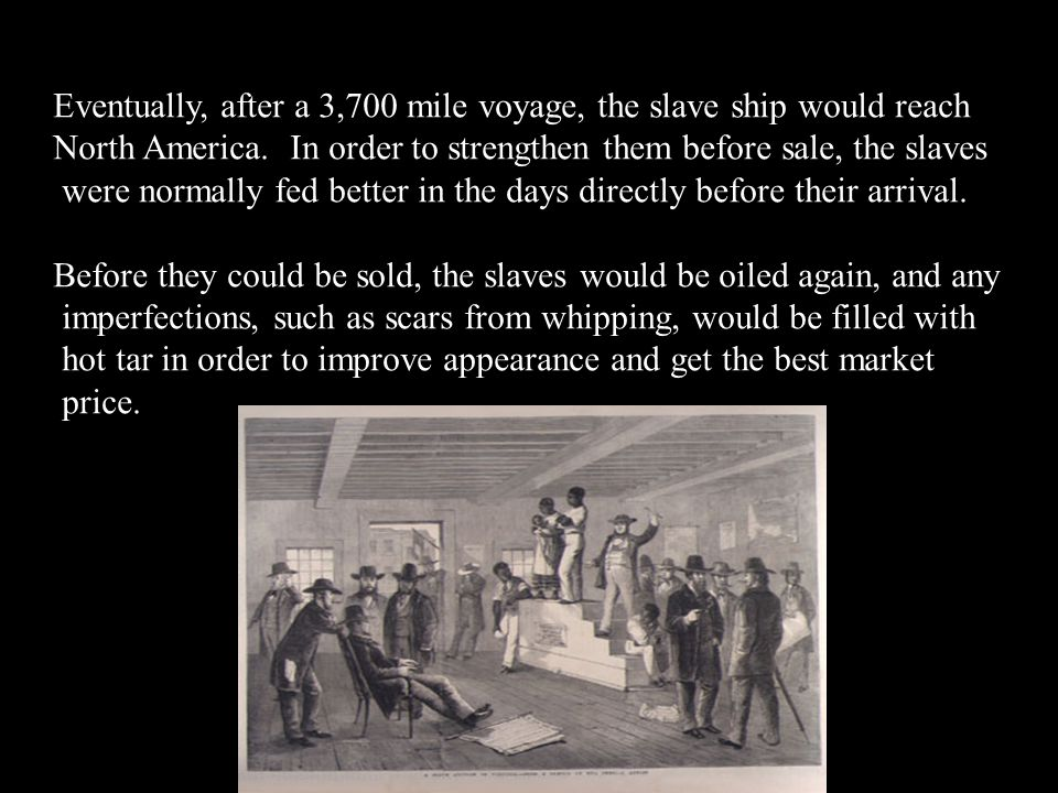 Eventually, after a 3,700 mile voyage, the slave ship would reach North America. In order to strengthen them before sale, the slaves were normally fed