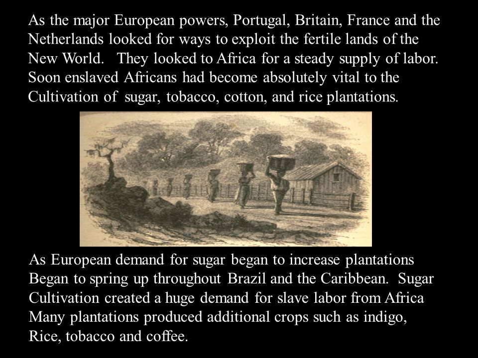 As the major European powers, Portugal, Britain, France and the Netherlands looked for ways to exploit the fertile lands of the New World. They looked