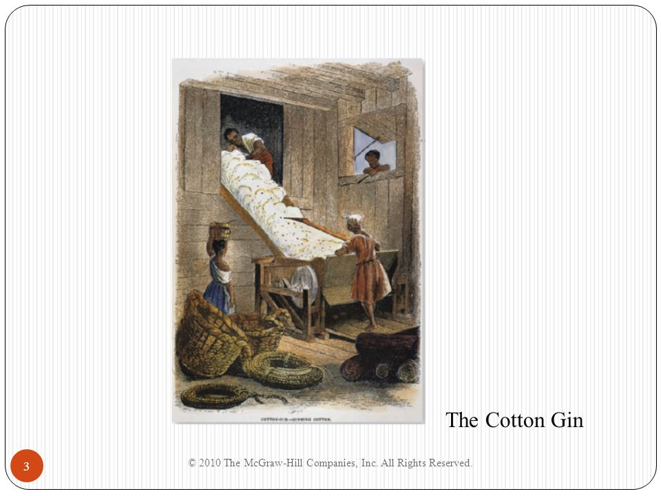 3 The Cotton Gin