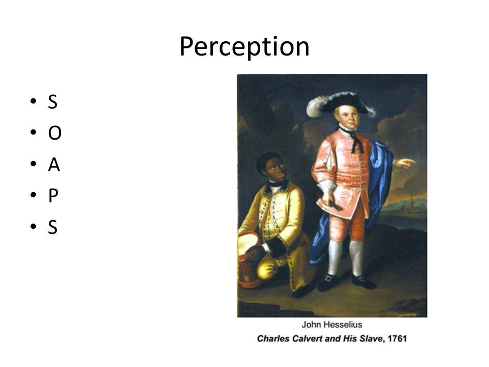 Perception S O A P S