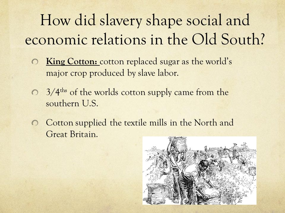 How did slavery shape social and economic relations in the Old South? King Cotton: cotton replaced sugar as the world's major crop produced by slave l