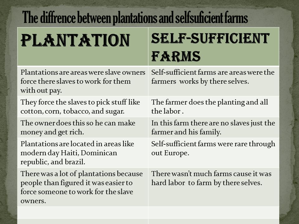 Plantation Self-sufficient farms Plantations are areas were slave owners force there slaves to work for them with out pay.