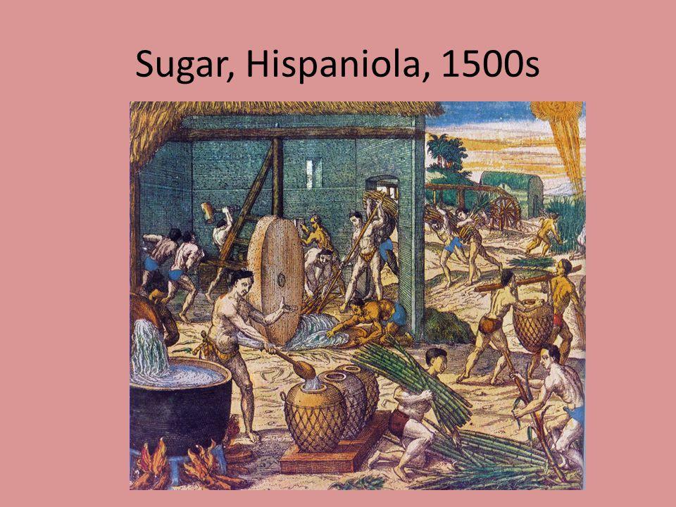 Sugar, Hispaniola, 1500s