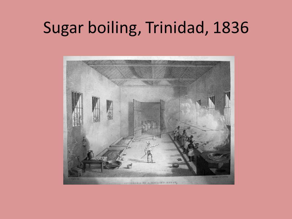 Sugar boiling, Trinidad, 1836